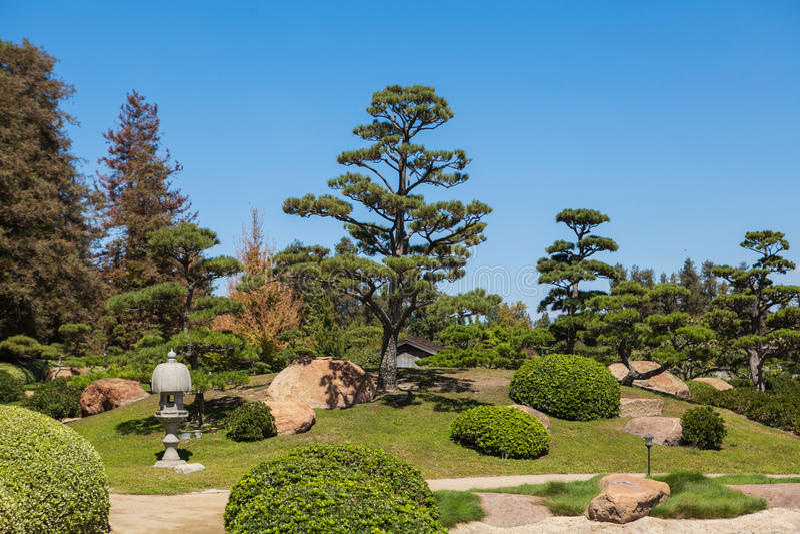 Mooi Japans groen park in de zomertijd stock foto's