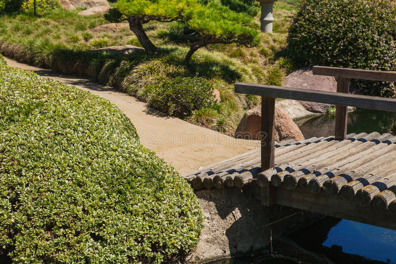Mooi Japans groen park in de zomertijd royalty-vrije stock foto's
