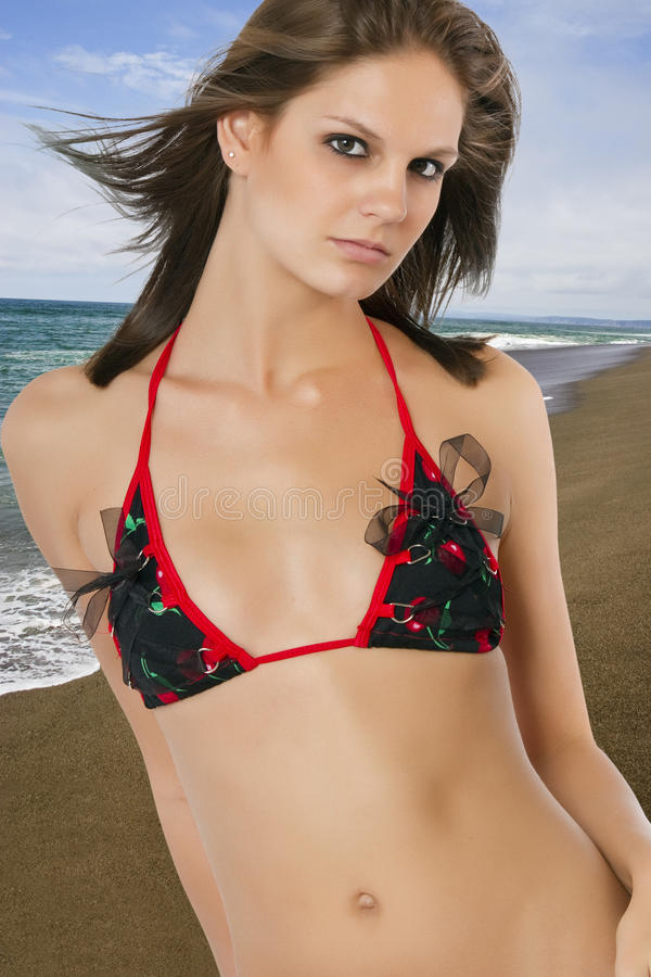 Mooi jong donkerbruin wijfje bij het strand stock afbeelding