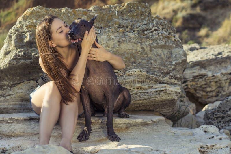 Mooi jong meisje die haar hondras kussen xoloitzcuintle, de zomer op een steenachtig strand bij zonsondergang royalty-vrije stock foto