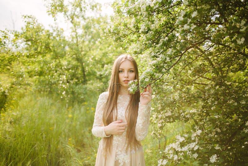 Mooi jong meisje in een bloeiende sering royalty-vrije stock foto