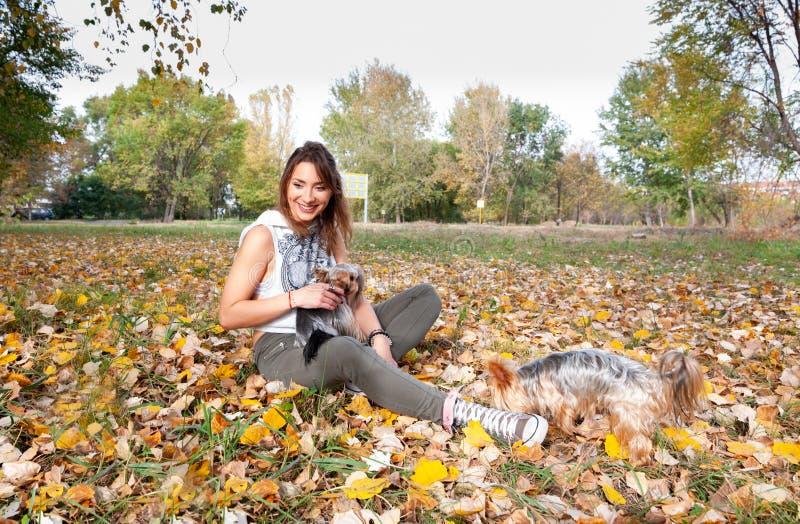 Mooi jong meisje met haar puppy die van de de terriërhond van Yorkshire en in de de herfstdag genieten van spelen in de park sele stock afbeeldingen