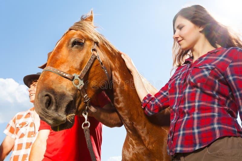 Mooi jong meisje met kastanje bruin paard stock fotografie