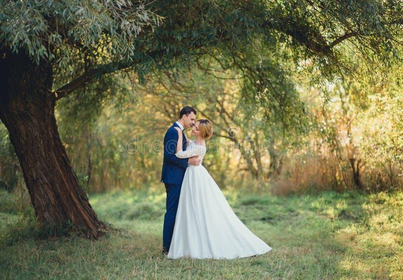 Mooi jong paar die op een gazon onder een boom koesteren bruid met blondehaar in een lange witte schitterende huwelijkskleding da stock foto