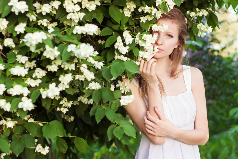 Mooi jong sexy elegant meisje in een witte kleding die zich in de tuin dichtbij een boom met Jasmijn bevinden stock afbeelding