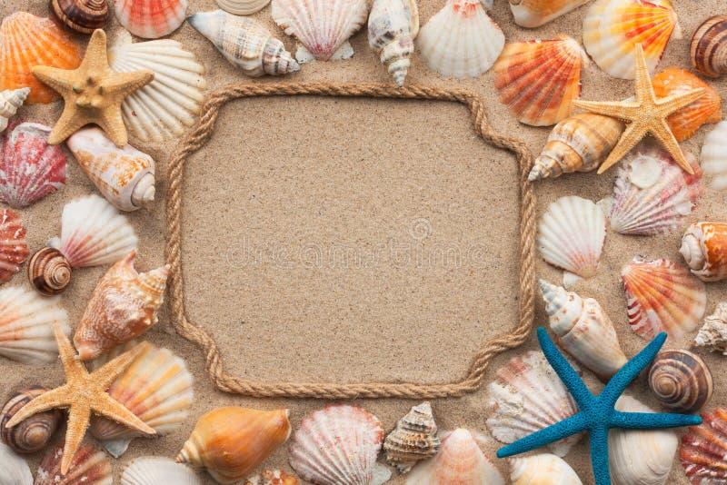 Mooi kader van kabel, zeeschelpen en zeester op het zand, met plaats voor uw tekst royalty-vrije stock afbeeldingen