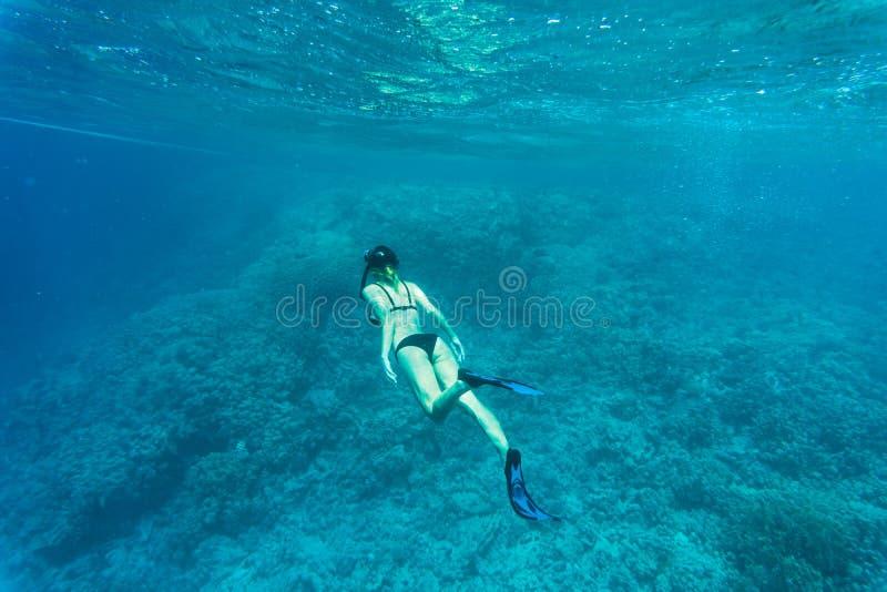 Mooi koraalrif met jonge freedivervrouw, het onderwaterleven Copyspace voor tekst royalty-vrije stock foto