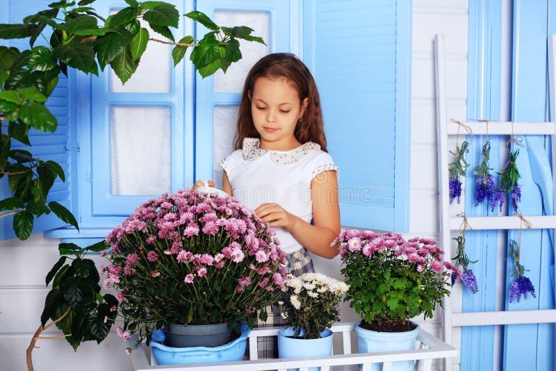 Mooi krullend meisje in een serre Het concept chil stock fotografie