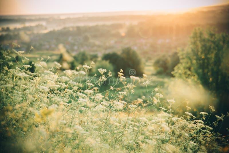 Mooi landelijk landschap royalty-vrije stock foto's