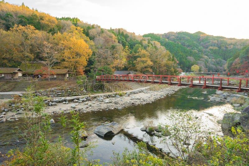 Mooi landschap in de herfst in Korankei, Japan stock afbeelding