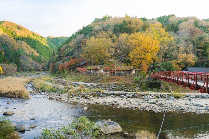 Mooi landschap in de herfst in Korankei, Japan royalty-vrije stock afbeeldingen