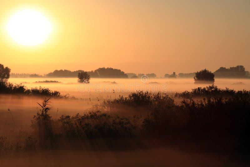 Mooi landschap in de mistige ochtend royalty-vrije stock foto