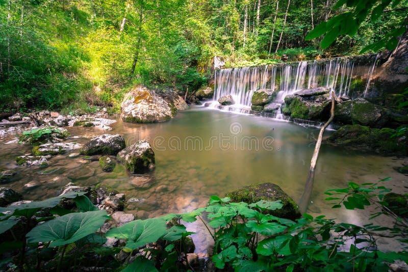 Mooi landschap in Europa: Alpiene Rivier en waterval in het bos royalty-vrije stock afbeelding