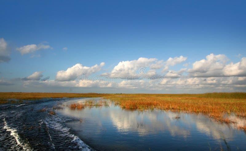 Mooi Landschap Everglades royalty-vrije stock foto's