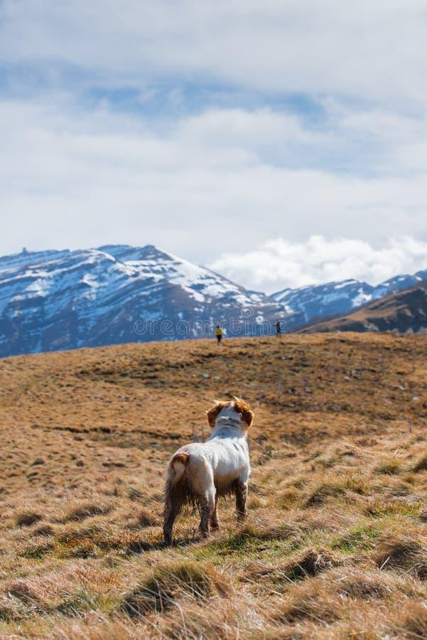 Mooi landschap in het hart van Spanje royalty-vrije stock foto's