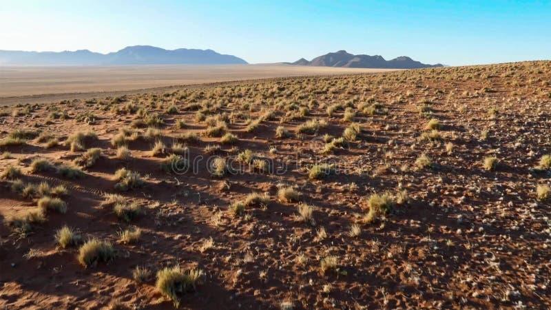 Mooi landschap in Kalahari met groot rood duin en heldere kleuren royalty-vrije stock foto