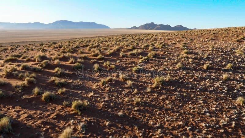 Mooi landschap in Kalahari met groot rood duin en heldere kleuren stock fotografie