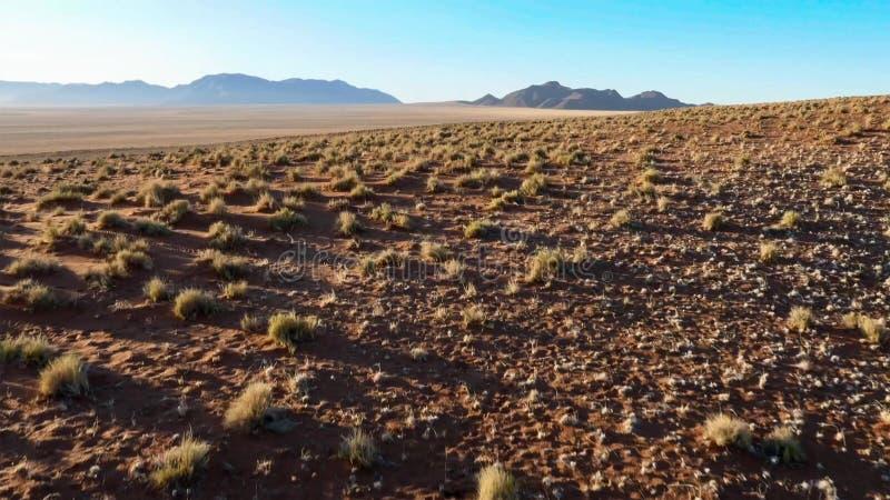 Mooi landschap in Kalahari met groot rood duin en heldere kleuren royalty-vrije stock foto's