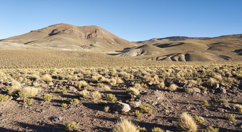 Mooi landschap langs de manier aan de Morejon-Lagune - Bolivië stock afbeelding