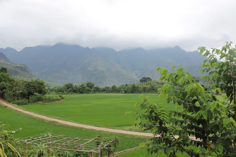 Mooi landschap met aardige weg en groene gebieden aan beide kanten stock fotografie