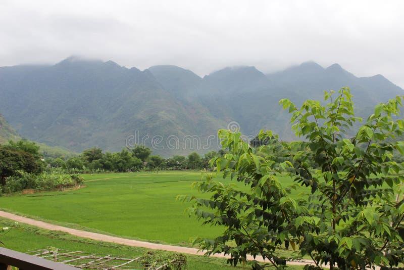 Mooi landschap met aardige weg en groene gebieden aan beide kanten royalty-vrije stock fotografie