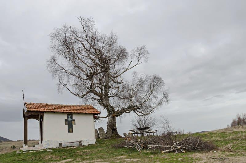 Mooi landschap met boom van de de lente de eerbiedwaardige berk en oude die kapel, in Plana-berg wordt gevestigd royalty-vrije stock fotografie
