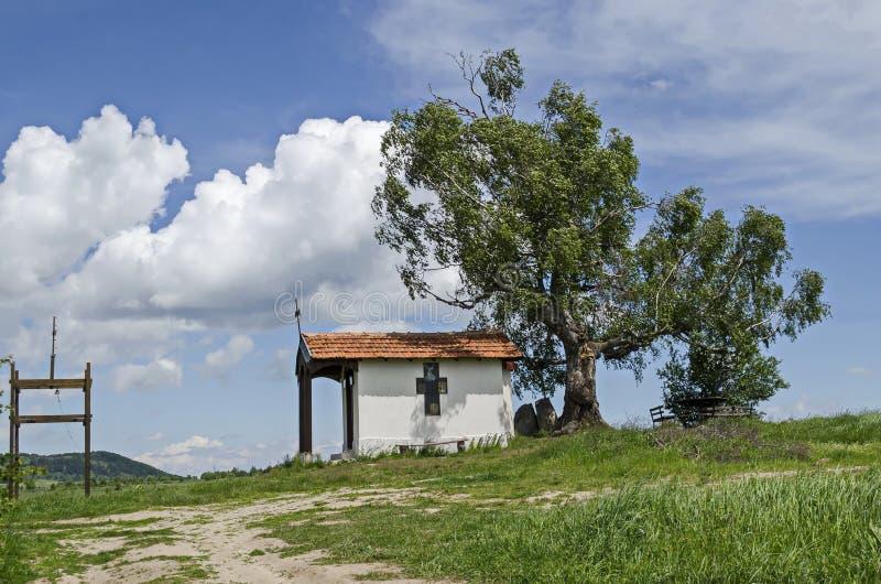 Mooi landschap met boom van de de lente de eerbiedwaardige berk en oude die kapel, in Plana-berg wordt gevestigd royalty-vrije stock afbeelding