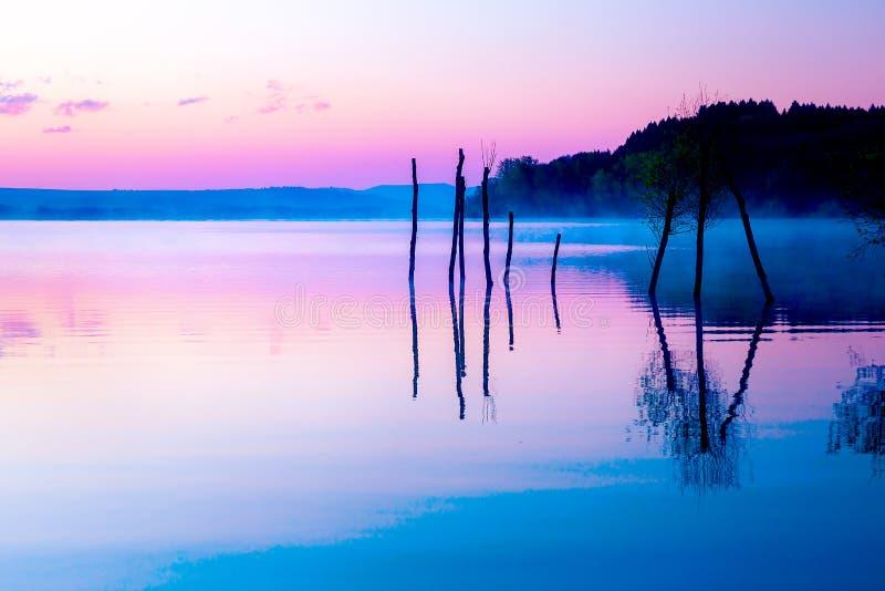 Mooi landschap met een meer en bergen op de achtergrond en bomen in het water Blauwe en purpere kleurentoon stock foto