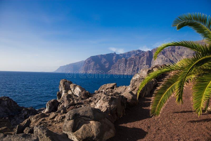 Mooi landschap met oceaan en rotsen Grote rotsen door het overzees met palm en cactussen royalty-vrije stock foto