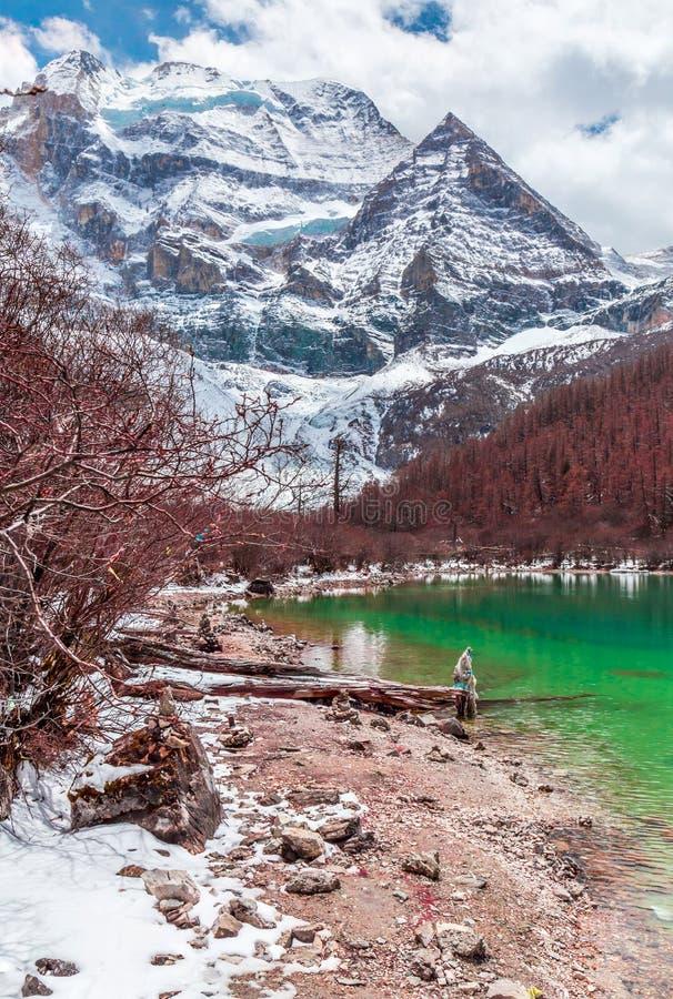 Mooi landschap met turkooise meer, bos en bergen stock afbeelding