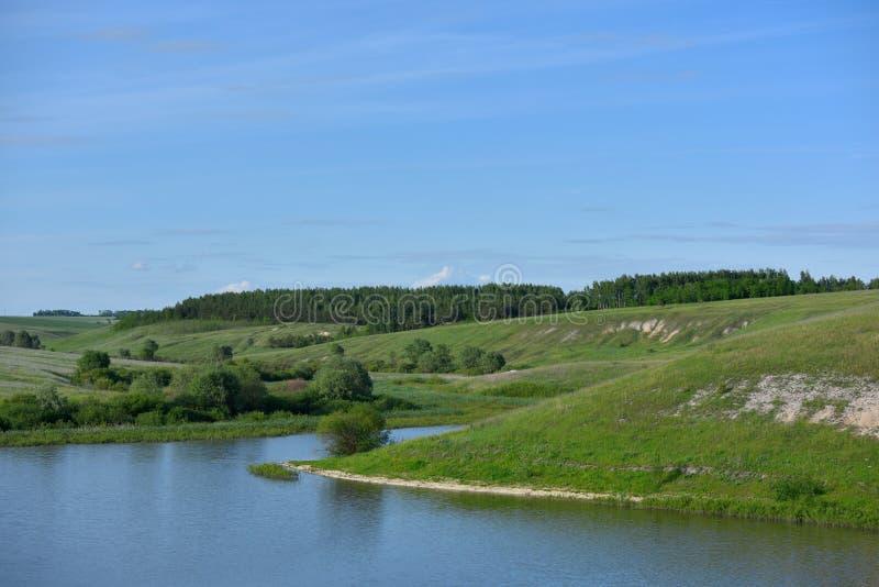 Mooi landschap met water, heuvels en bos royalty-vrije stock afbeelding