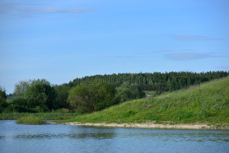 Mooi landschap met water, heuvels en bos stock foto's