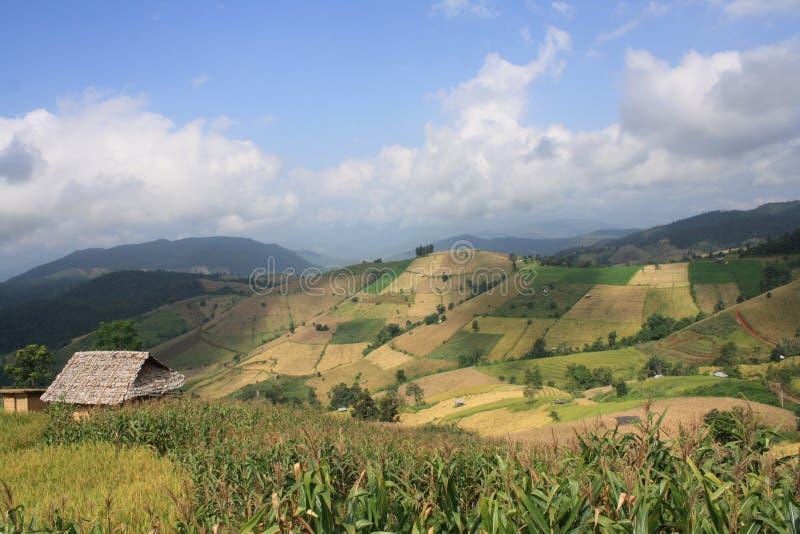 Mooi landschap van berg in aard royalty-vrije stock fotografie