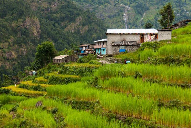 Mooi landschap van de bergen van Himalayagebergte op Manaslu-kring stock fotografie