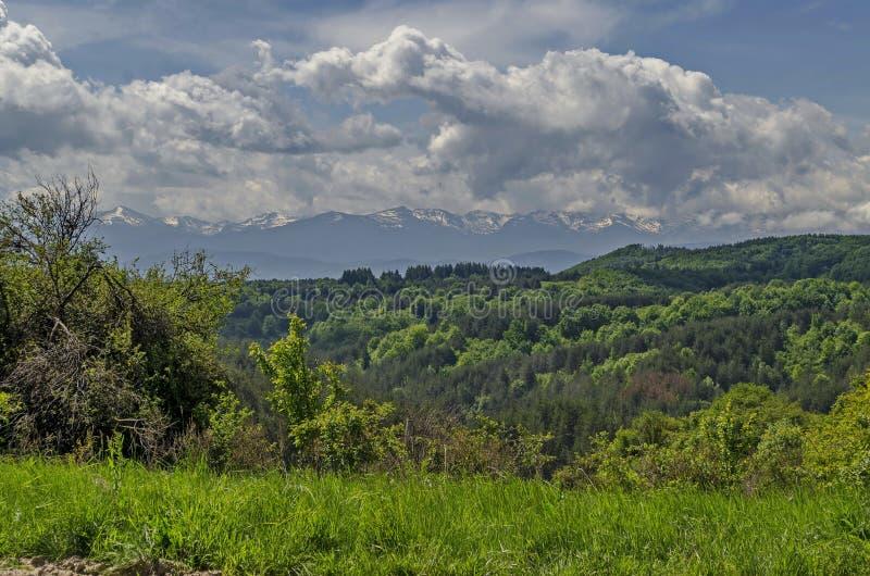 Mooi landschap van de lenteaard met groene open plek en bos in Plana-berg naar Rila-berg royalty-vrije stock fotografie