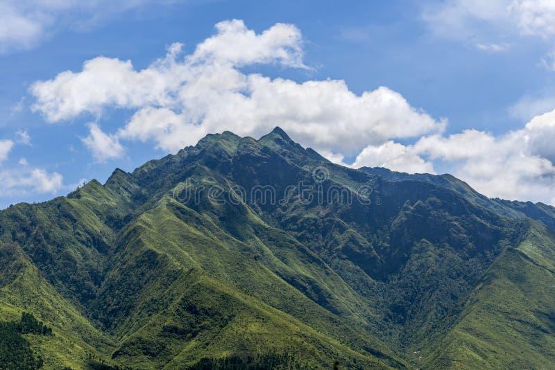 Mooi landschap van de Panberg van Si van de topventilator in Sapa Vietnam stock foto