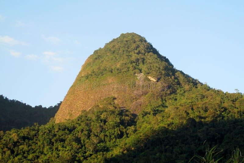 Mooi landschap van groene bos en vlotte rots stock afbeelding