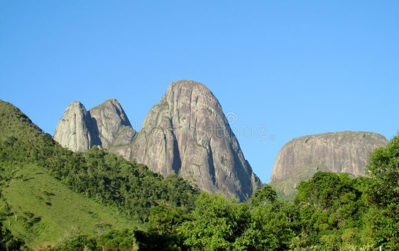 Mooi landschap van groene bos en vlotte rotsen royalty-vrije stock afbeelding