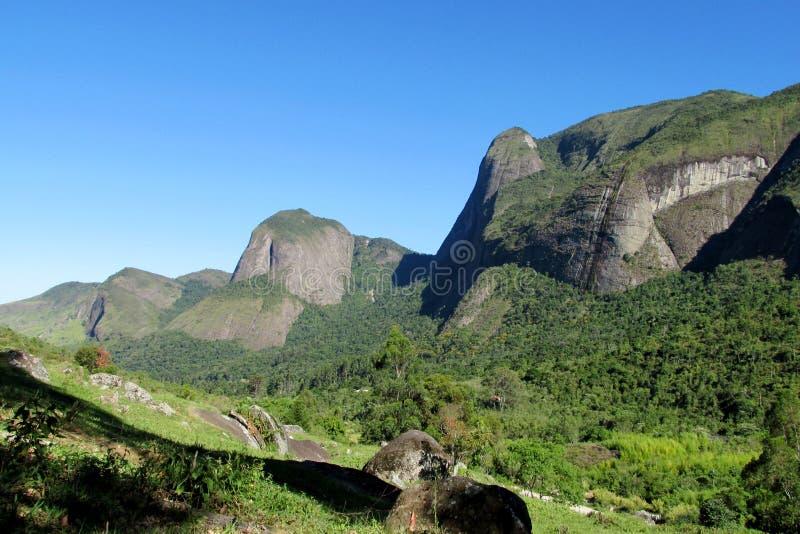 Mooi landschap van groene bos en vlotte rotsen stock fotografie