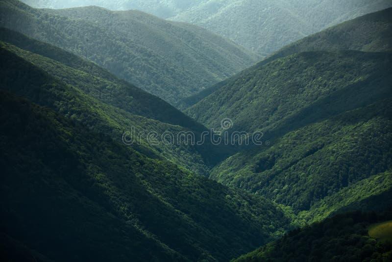 Mooi landschap van Karpatische die bergen van Borzhava m worden gezien stock afbeelding
