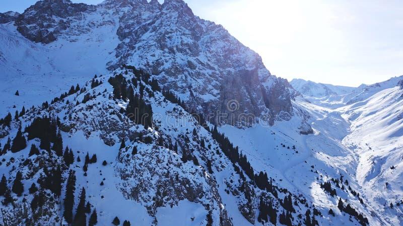 Mooi landschap van sneeuwbergen De mening van de kloof en het bos royalty-vrije stock foto's