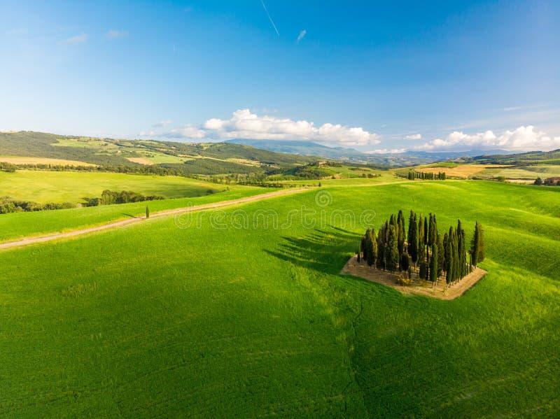 Mooi landschap van Toscanië in Italië - Groep Italiaanse cipressen dichtbij dÂ'Orcia van San Quirico - satellietbeeld - Val-d'O royalty-vrije stock foto