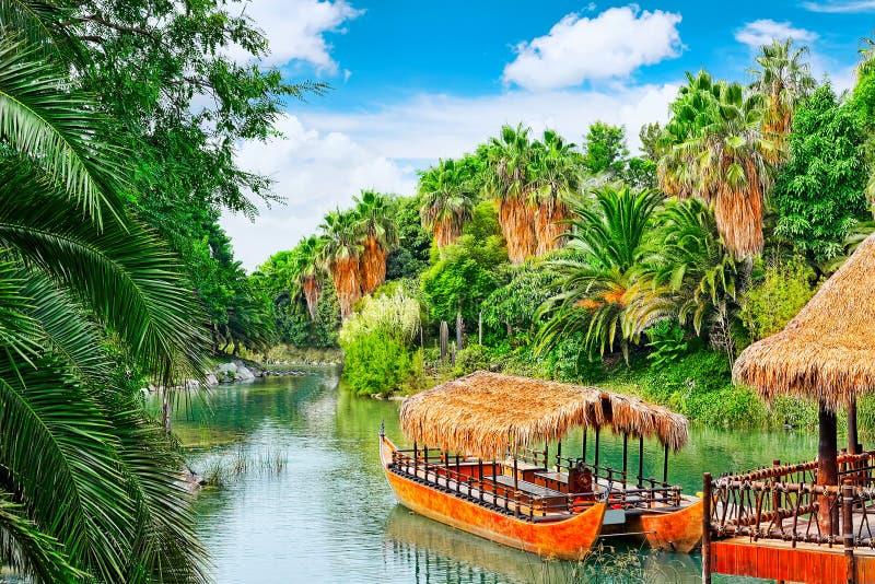 Mooi landschap van vochtige tropische wildernis stock fotografie