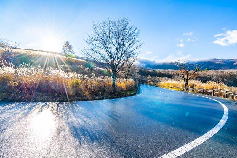 Mooi landschap van wegkant rond bergfuji in yamanakakomeer Japan royalty-vrije stock foto