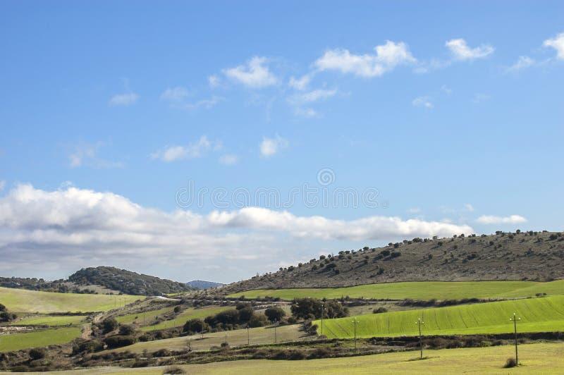 Mooi landschap van zachte heuvels en oogstgebieden royalty-vrije stock foto's