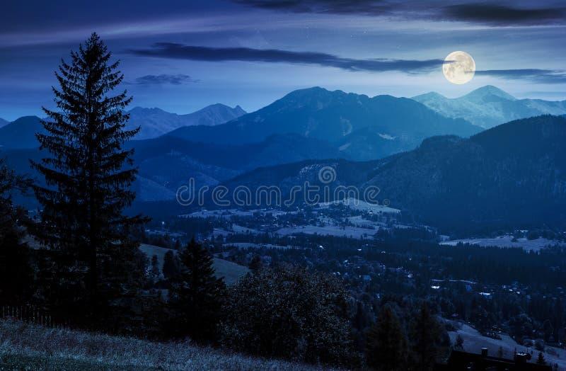 Mooi landschap van zakopanevallei bij nacht stock fotografie