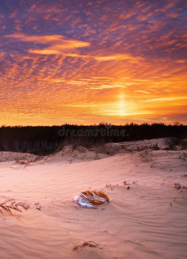 Mooi landschap in woestijn royalty-vrije stock afbeeldingen