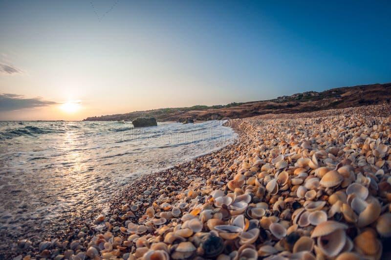 Mooi landschap, zandige rotsachtige baai bij zonsondergang, wild zeeschelpstrand royalty-vrije stock foto