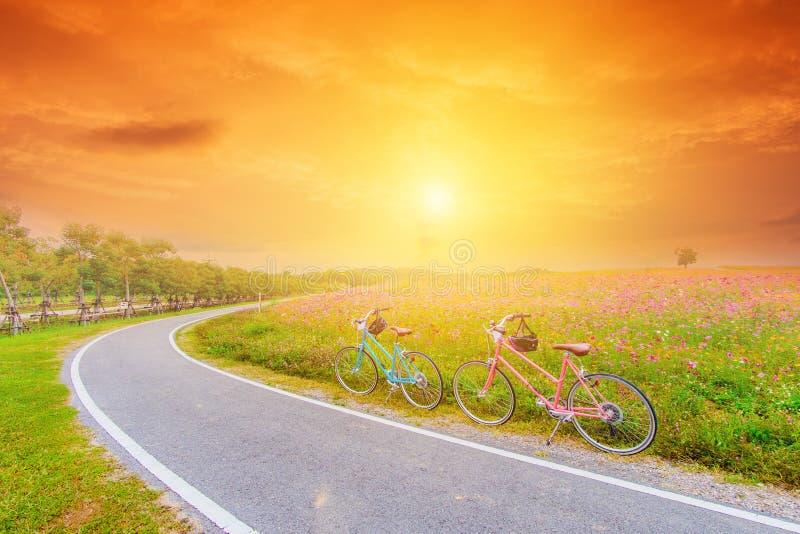 Mooi landschapsbeeld met fietsen bij zonsondergang stock afbeelding