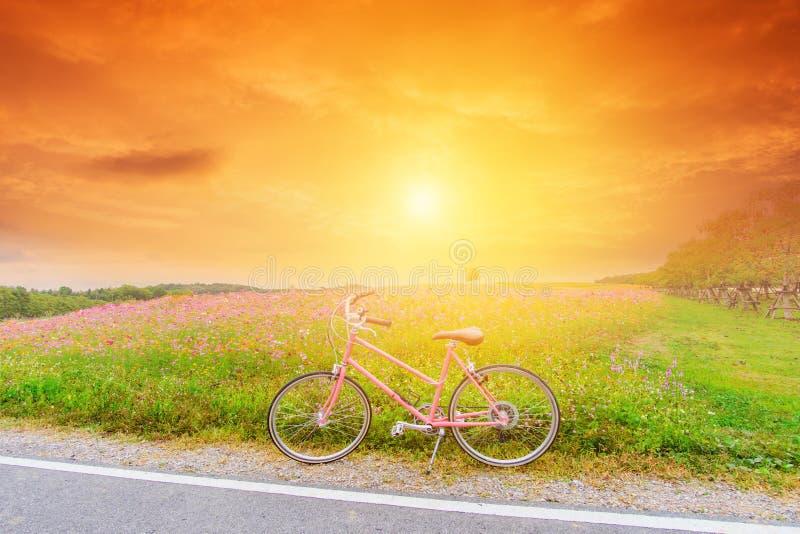 Mooi landschapsbeeld met roze fiets bij zonsondergang royalty-vrije stock afbeelding